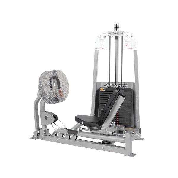 HD-1610 Leg Press-Calf Raise Hoist